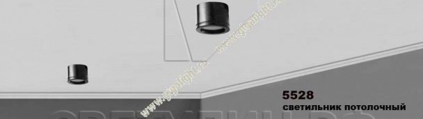 Потолочный светильник 5528 2