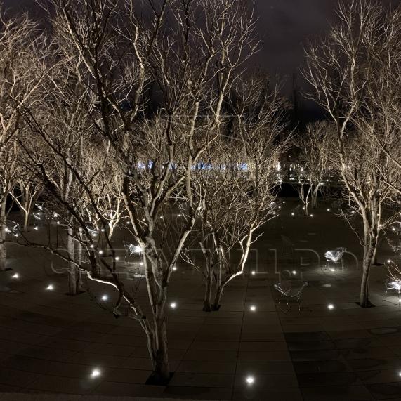 Ландшафтный грунтовый светильник Ахилл 2